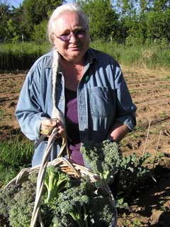 diane broccili harvest