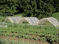 donate hoop house